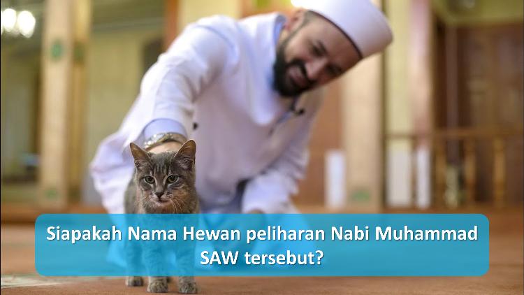 Siapakah-Nama-Hewan-peliharan-Nabi-Muhammad-SAW